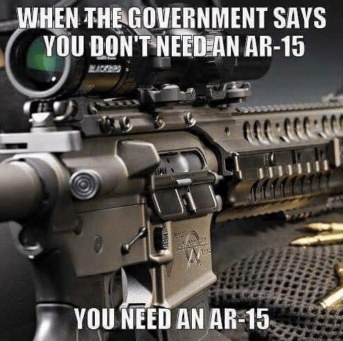 When the government says you don't need an AR-15... you need an AR-15.