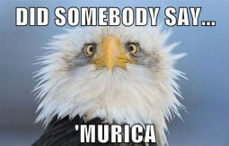 Did Somebody Say 'Murica! 4th Of July In Memes (10 Memes)